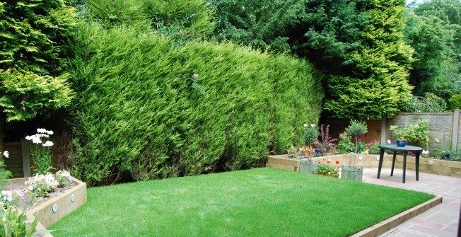 Synthetic Garden Turf in Alberbury